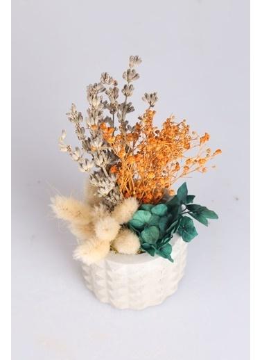 Kibrithane Çiçek Kuru Çiçek Beton Saksıda Kır Çiçek Aranjman Kc00200672 Renkli